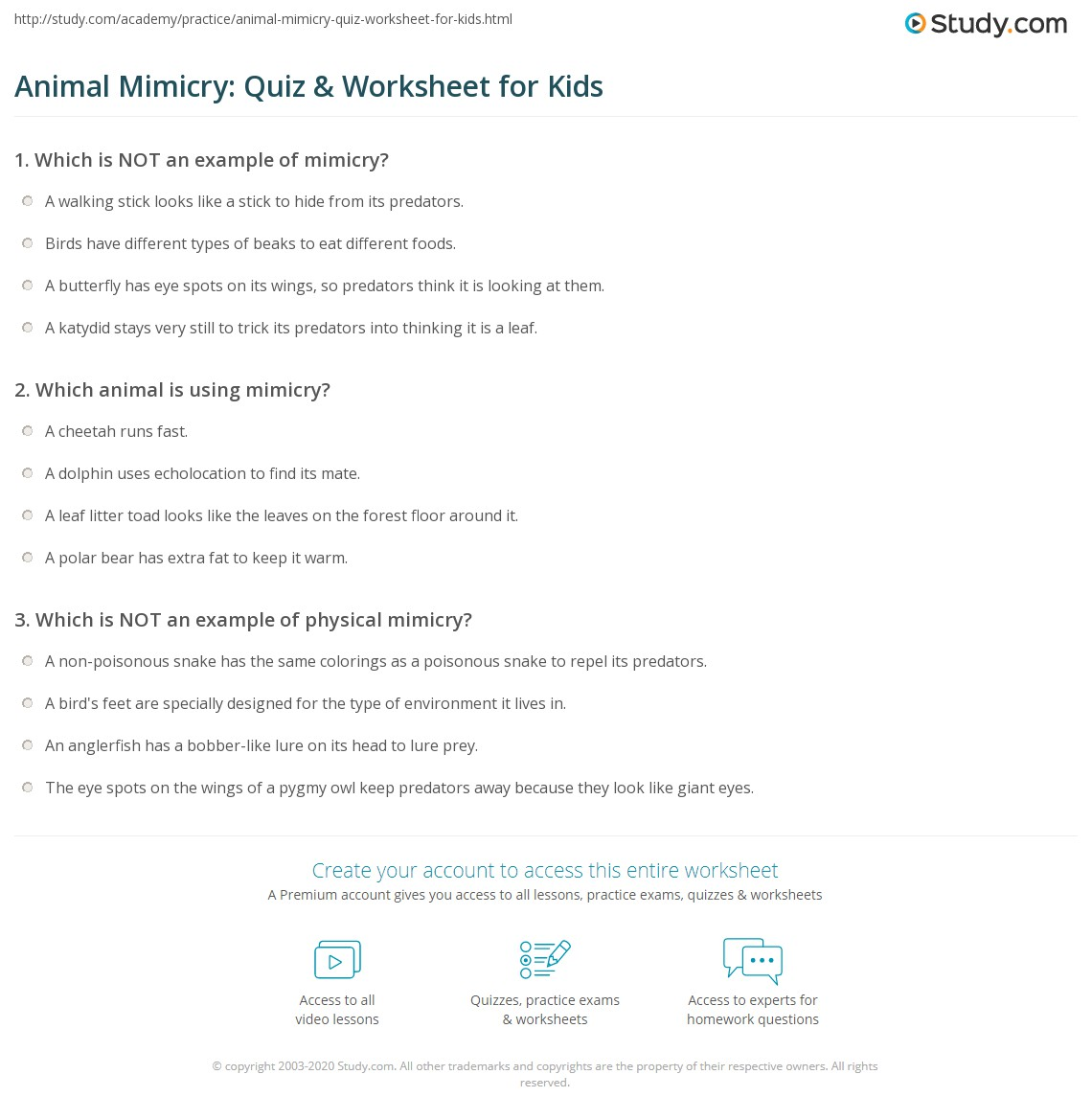 Animal Mimicry Quiz Amp Worksheet For Kids