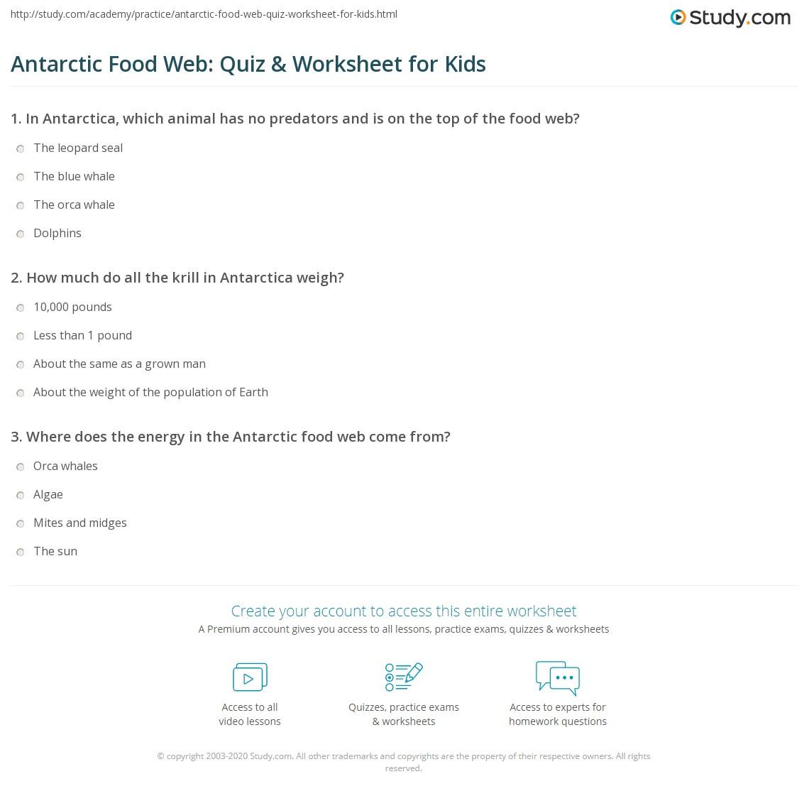 Antarctic Food Web Quiz Amp Worksheet For Kids