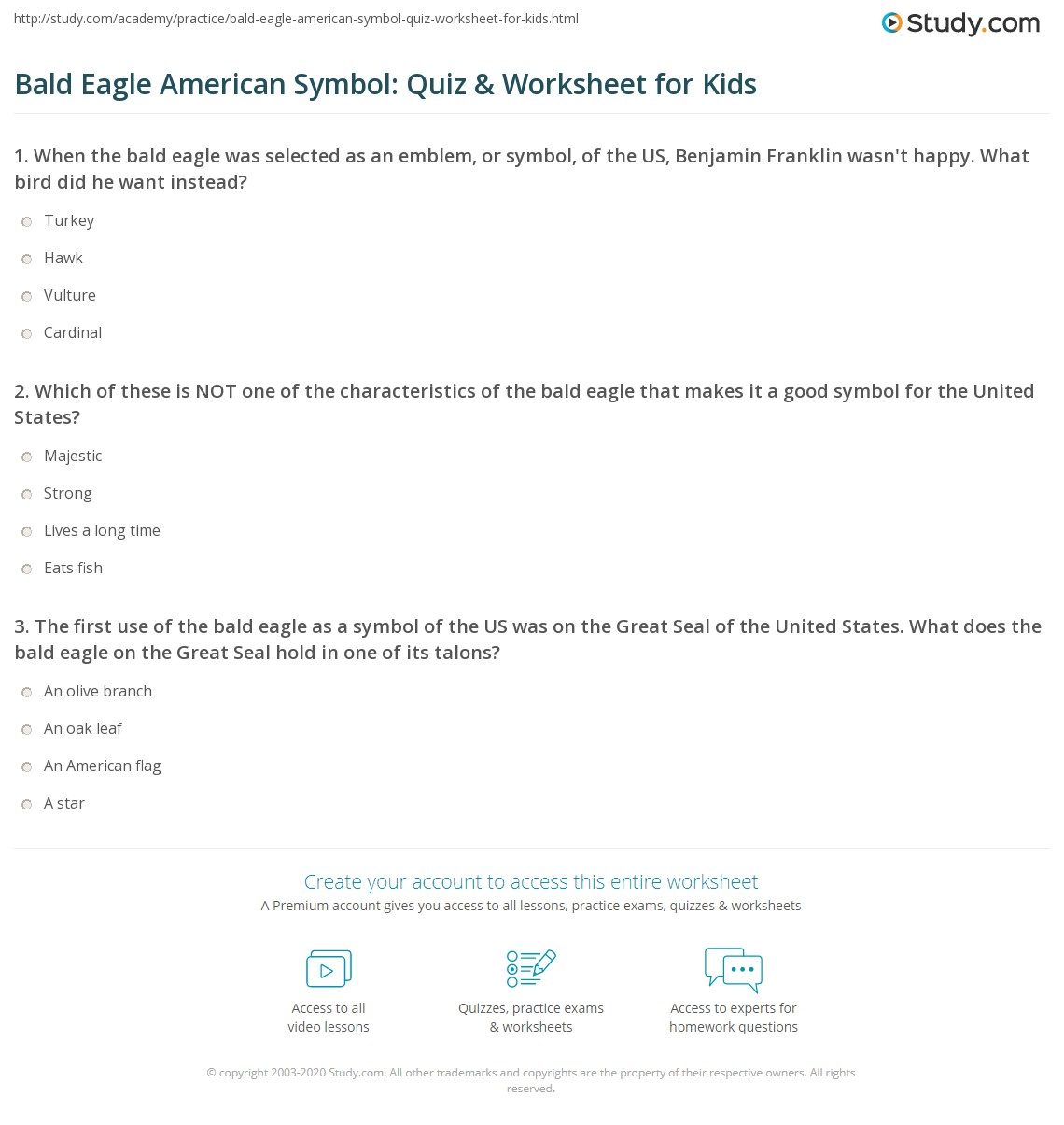 Bald Eagle American Symbol Facts For Kids
