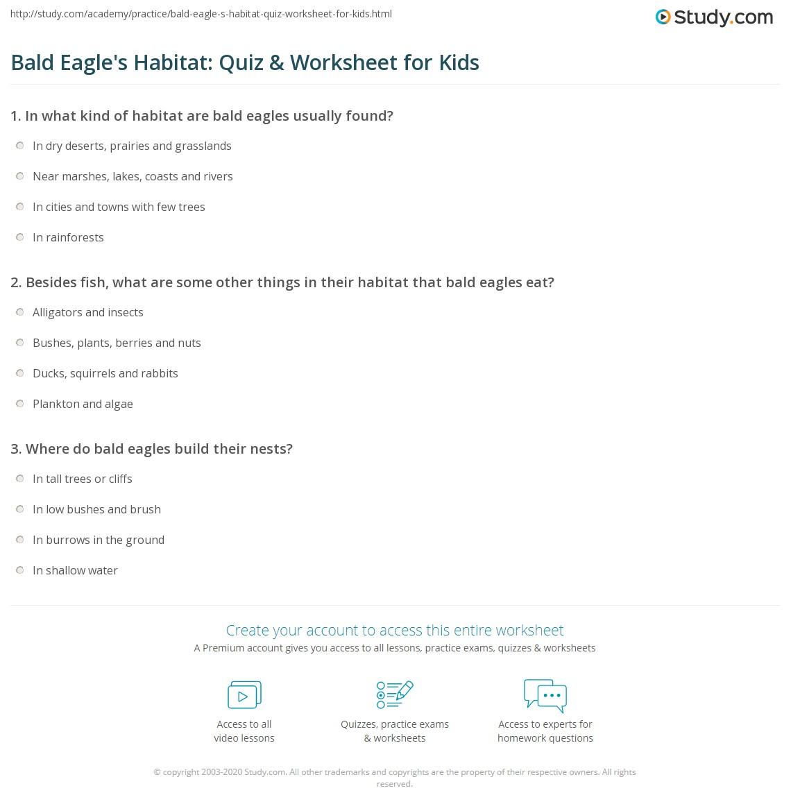 Bald Eagle S Habitat Quiz Amp Worksheet For Kids