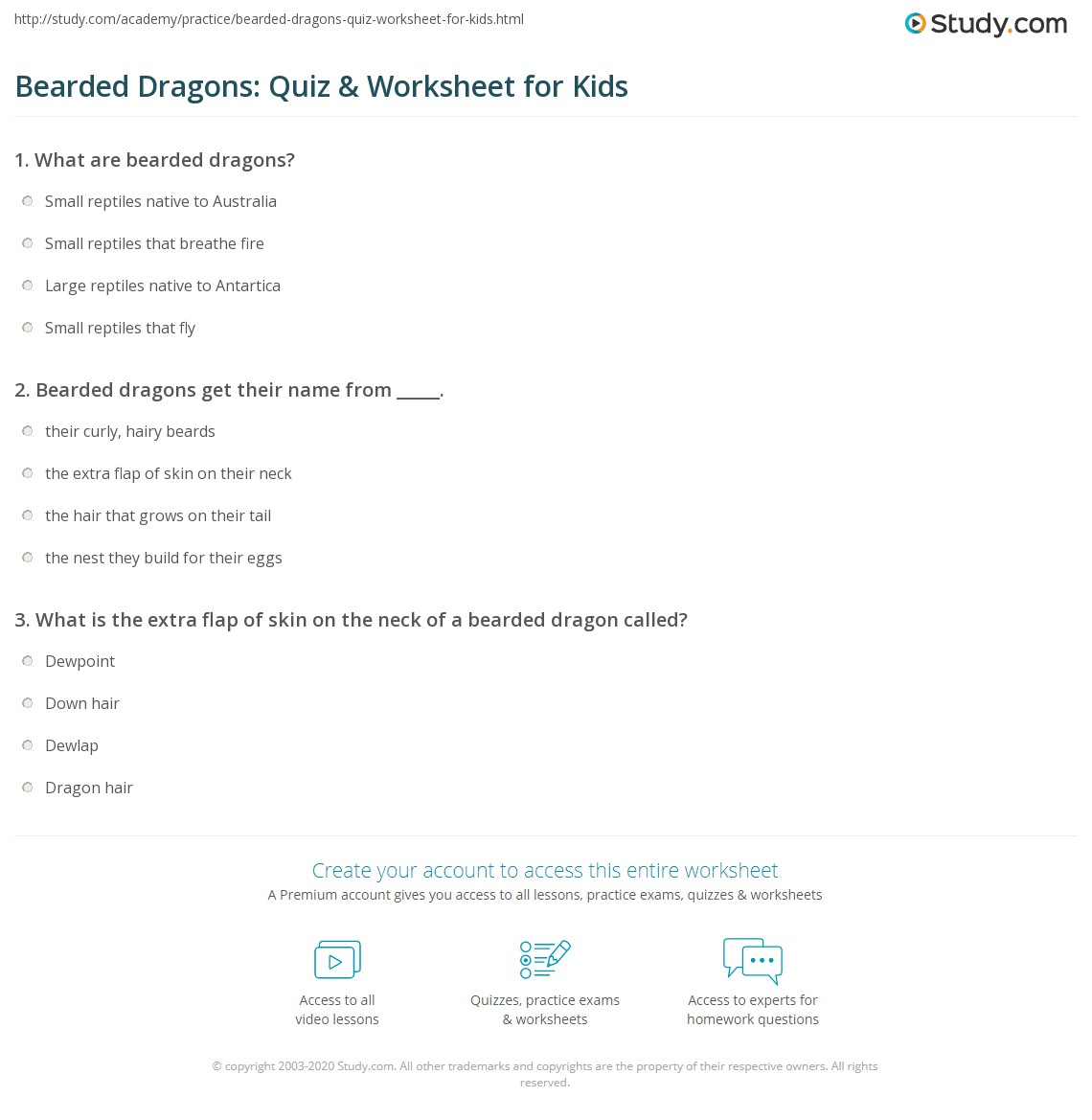 Bearded Dragons Quiz Amp Worksheet For Kids