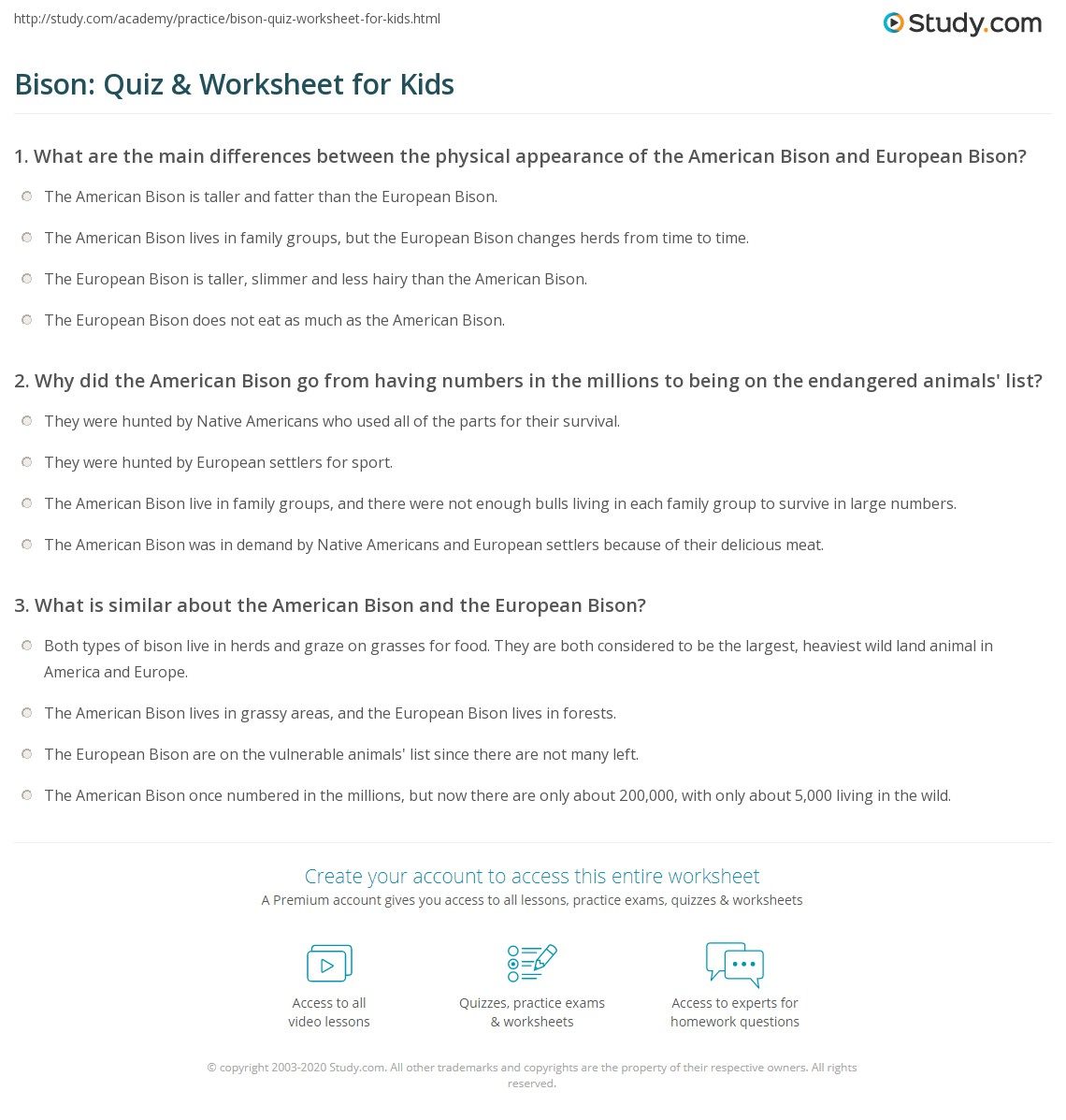 Bison Quiz Amp Worksheet For Kids