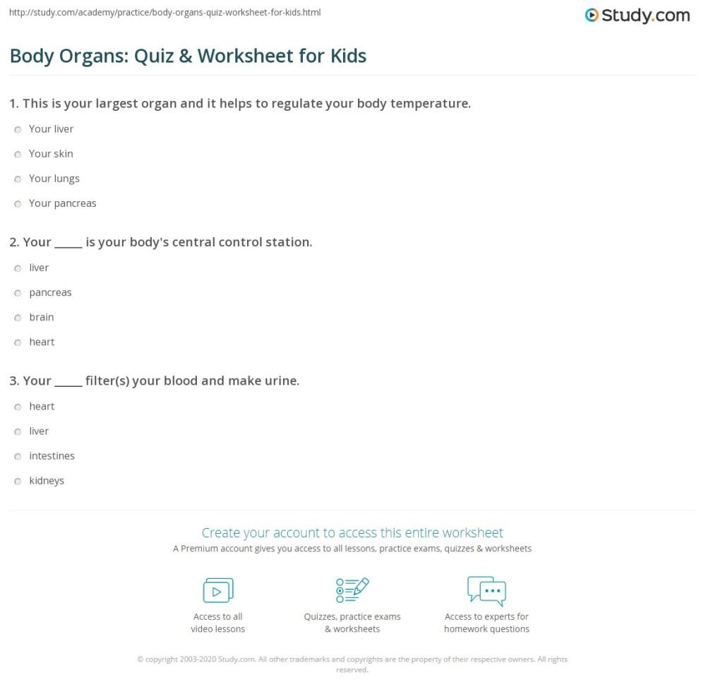 medium resolution of Body Organs: Quiz \u0026 Worksheet for Kids   Study.com