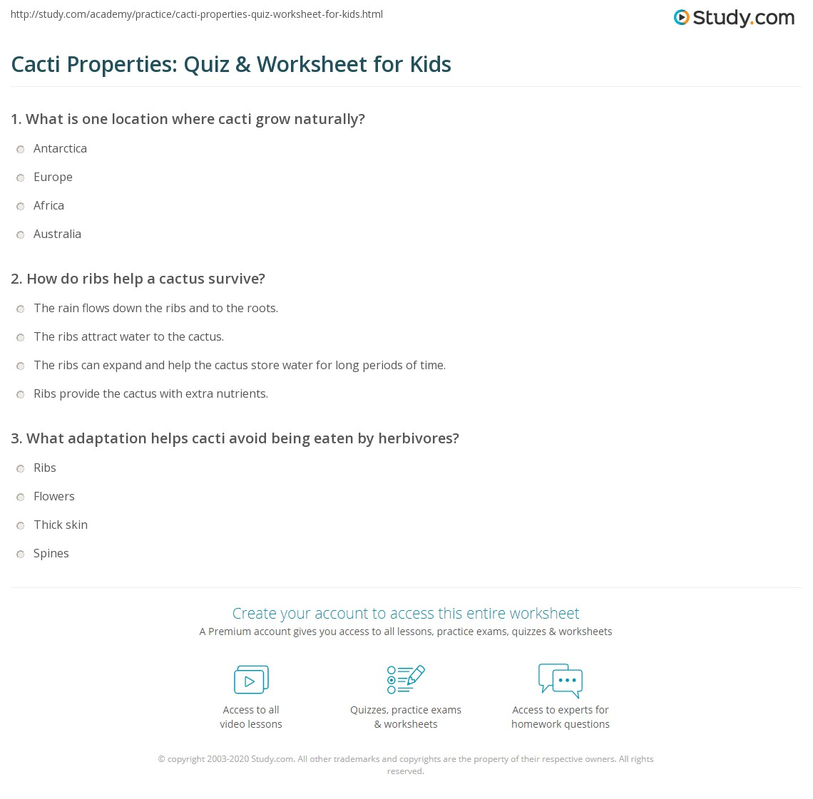 Cacti Properties Quiz Amp Worksheet For Kids