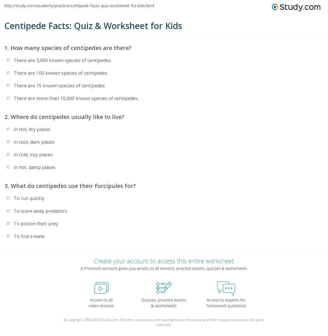 Centipede Facts Quiz Amp Worksheet For Kids