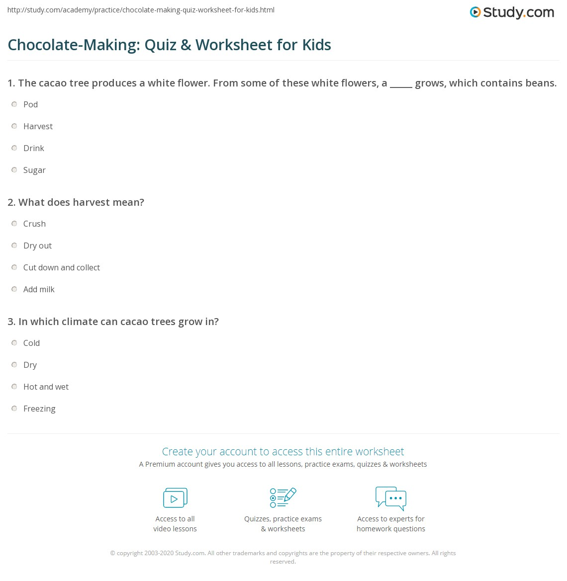 Chocolate Making Quiz Amp Worksheet For Kids