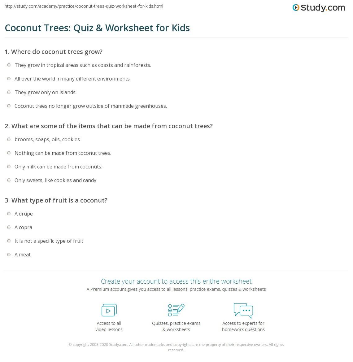 Coconut Trees Quiz Amp Worksheet For Kids