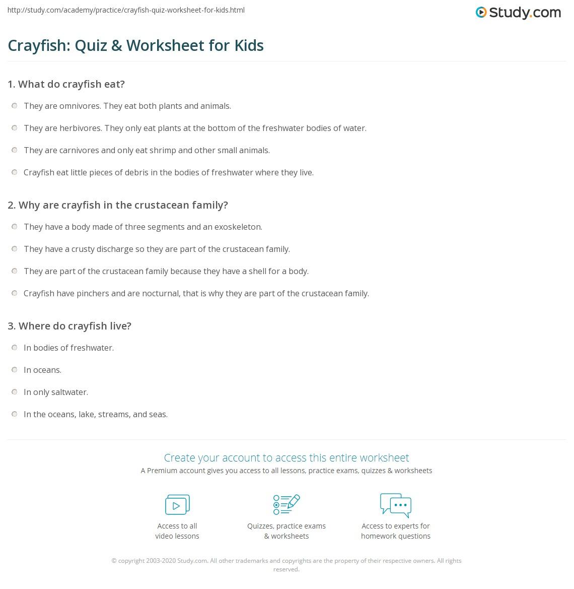 Crayfish Quiz Amp Worksheet For Kids