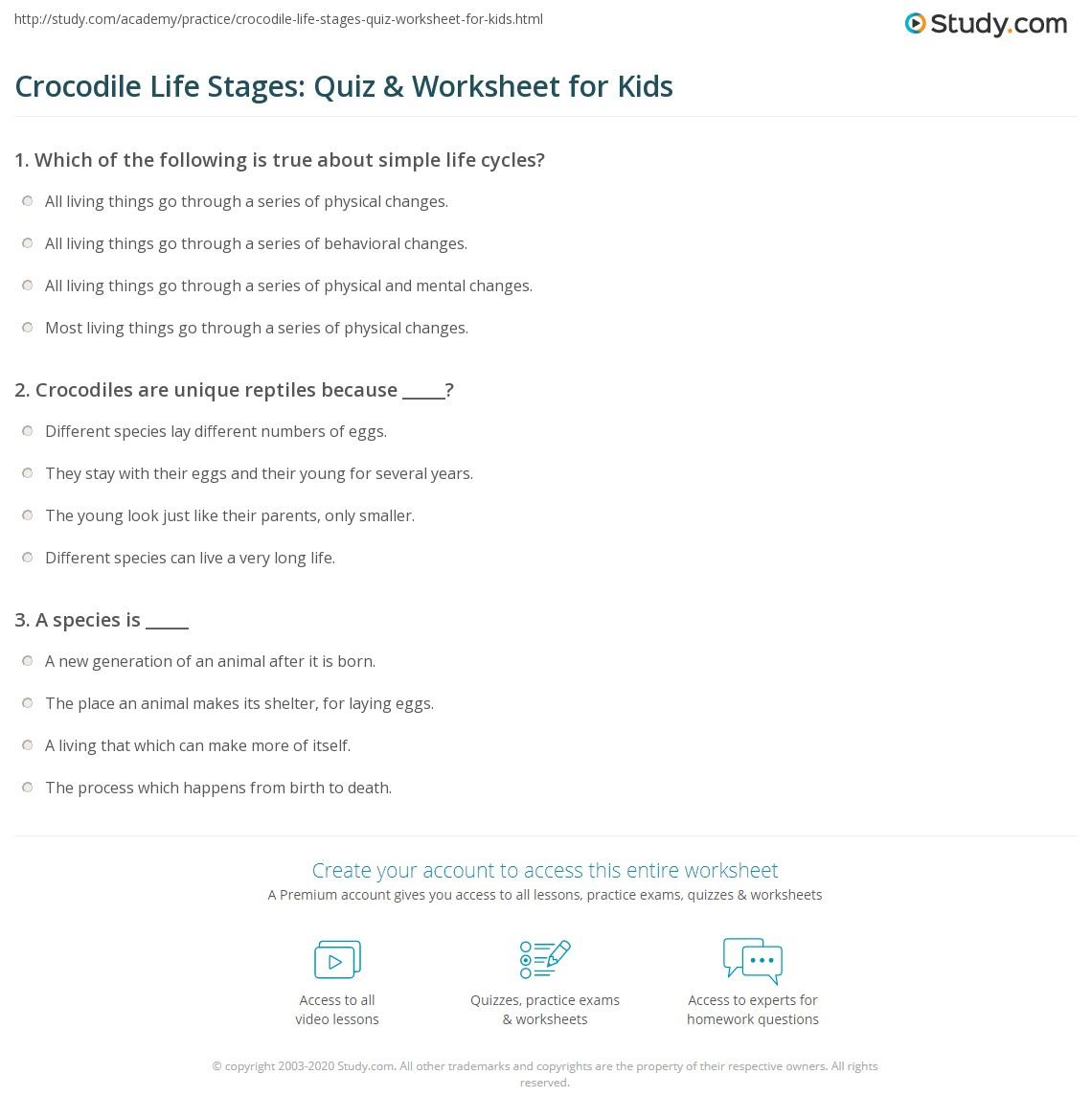 Crocodile Life Stages Quiz Amp Worksheet For Kids