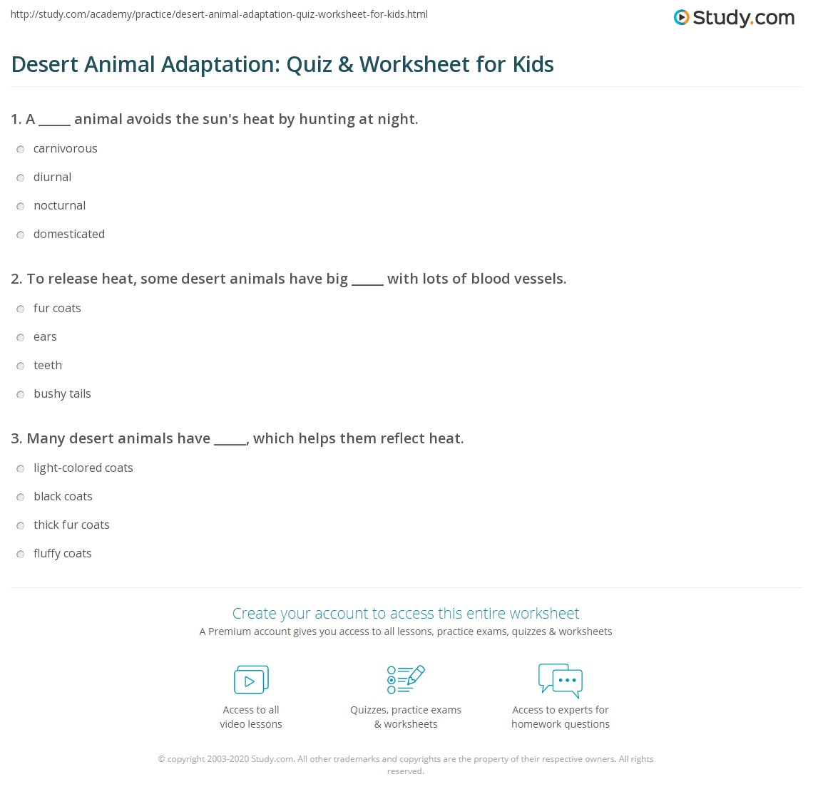 Nocturnal And Diurnal Animals Worksheets
