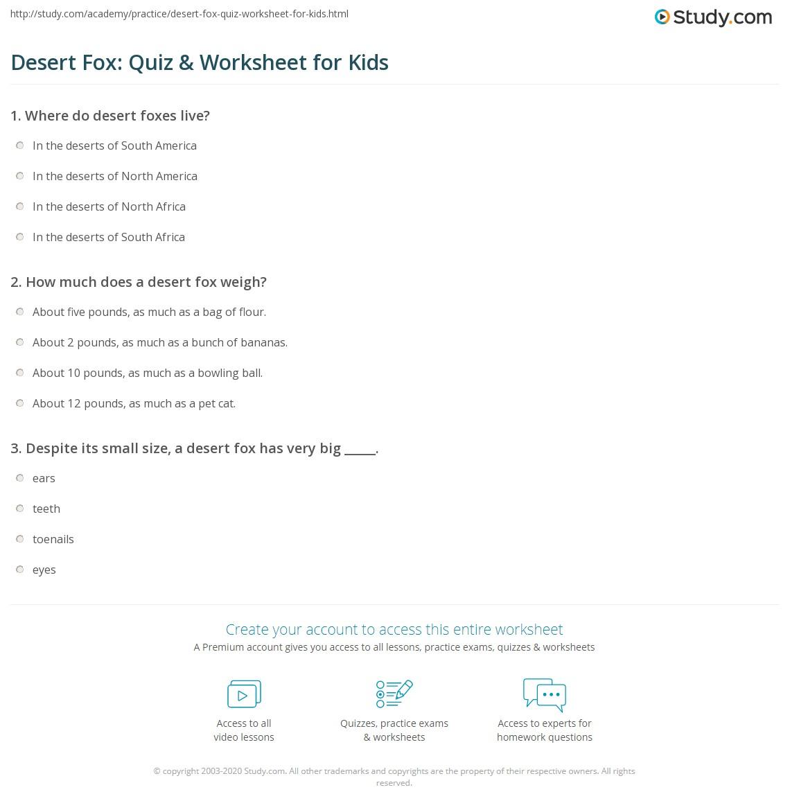 Desert Fox Quiz Amp Worksheet For Kids