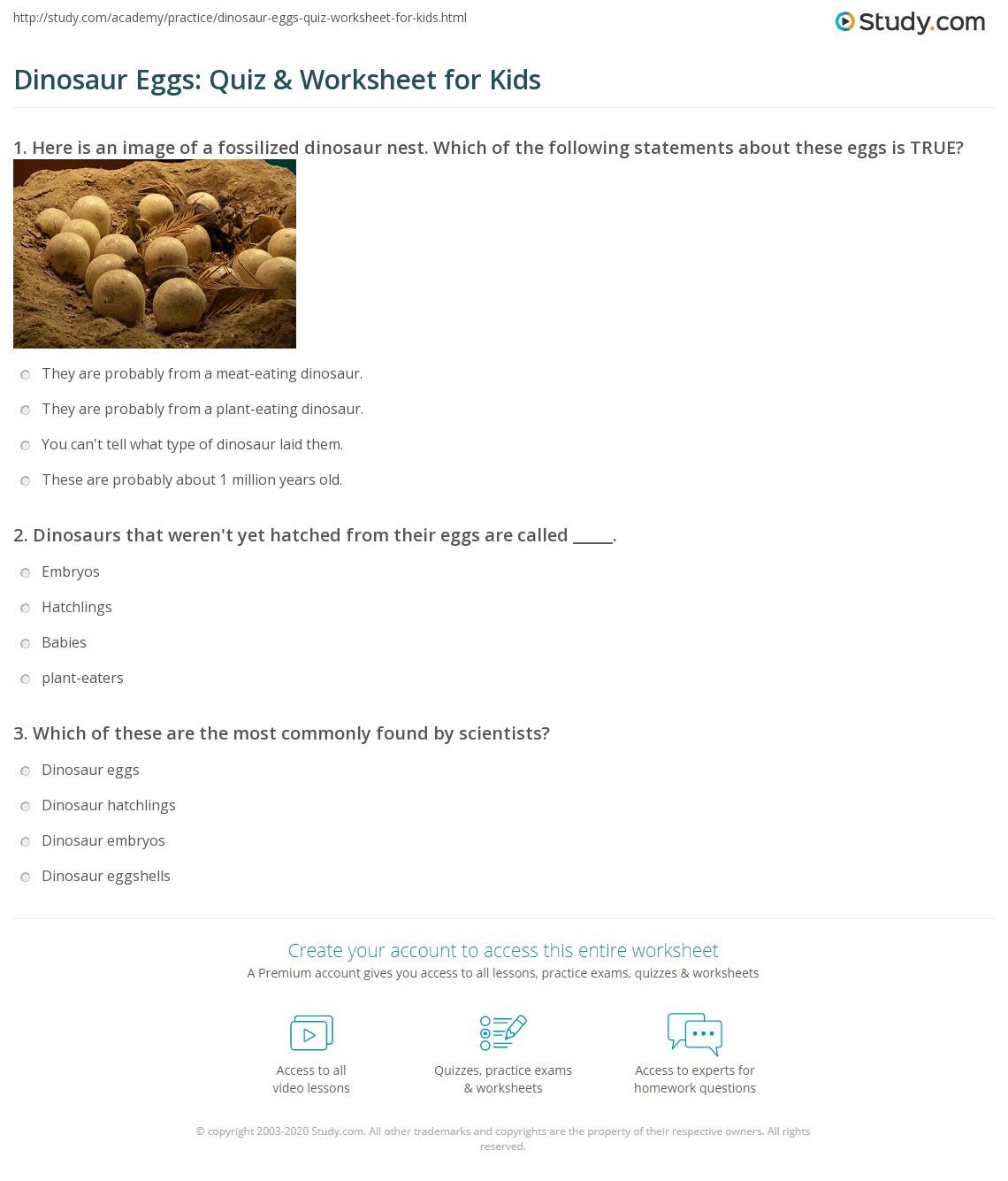 Dinosaur Eggs Quiz Amp Worksheet For Kids