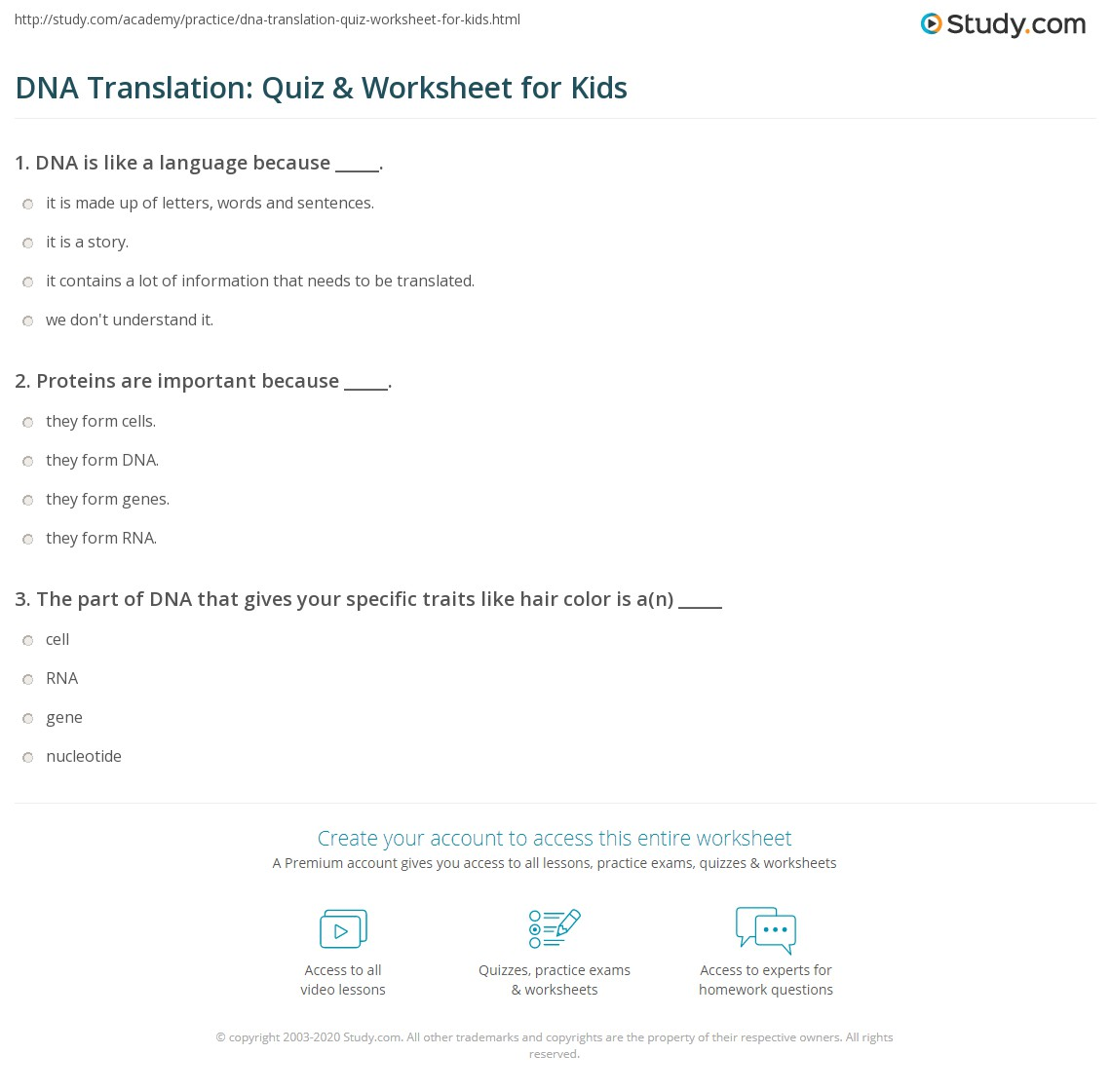 Dna Translation Quiz Amp Worksheet For Kids