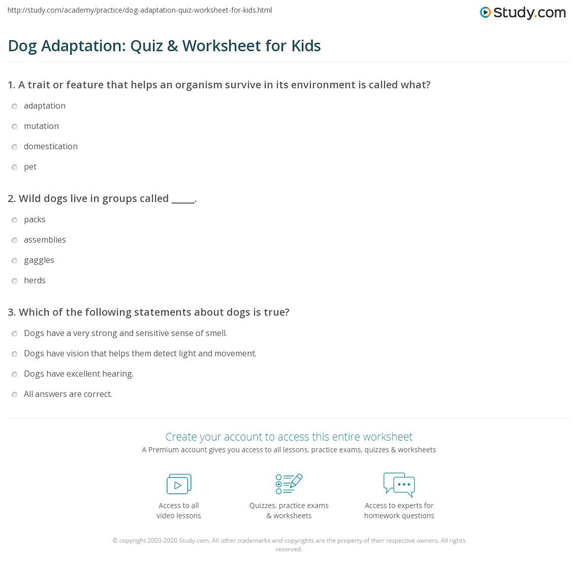 Dog Worksheets For Kids