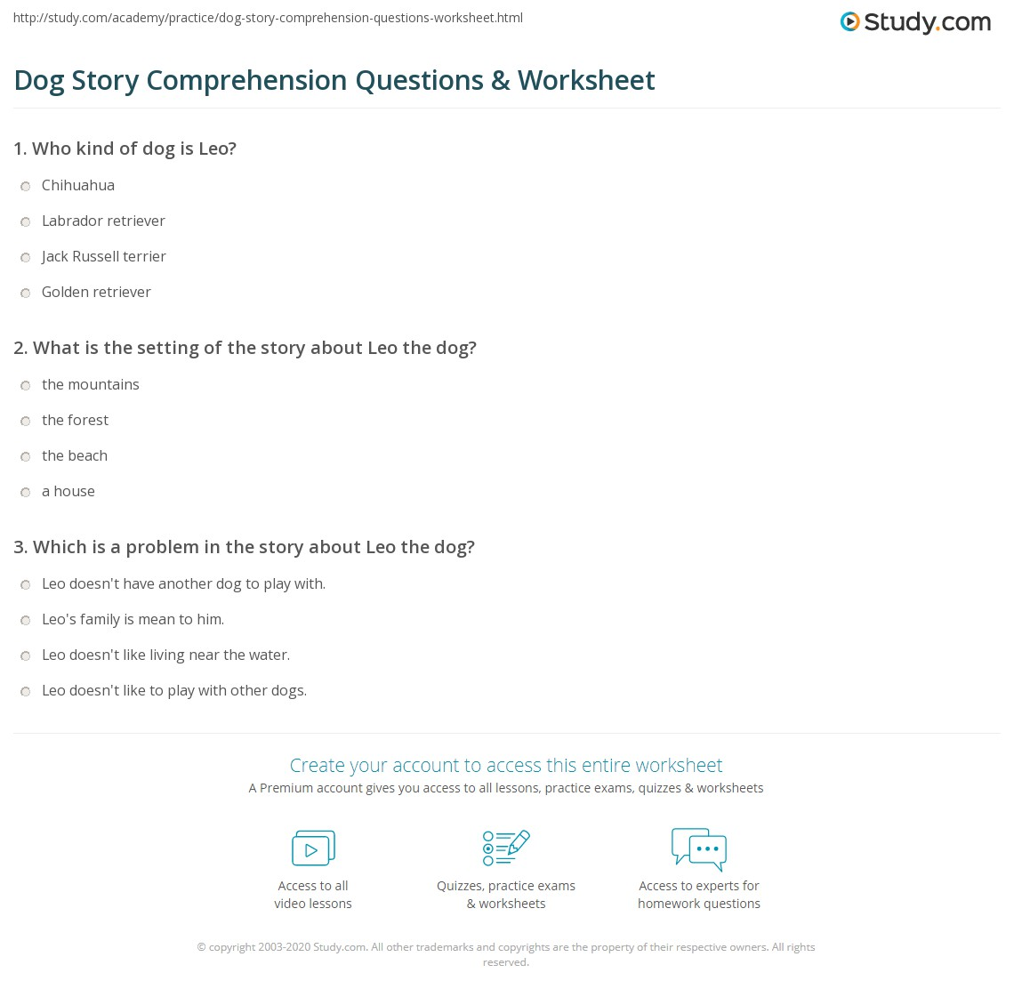 Dog Story Comprehension Questions Amp Worksheet