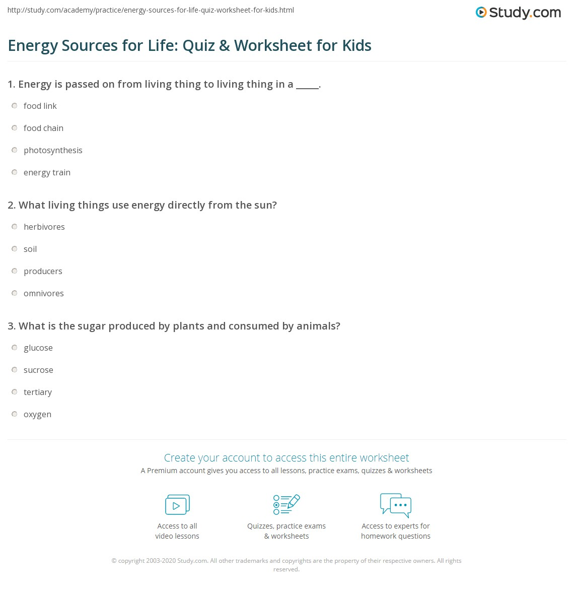 hight resolution of Energy Sources for Life: Quiz \u0026 Worksheet for Kids   Study.com