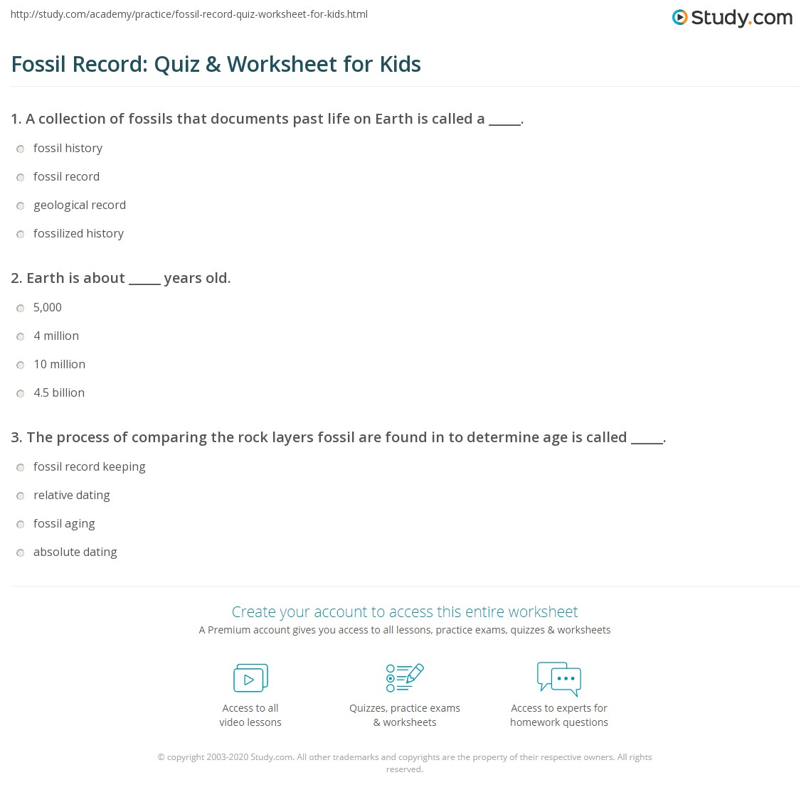 Fossil Record Quiz Amp Worksheet For Kids