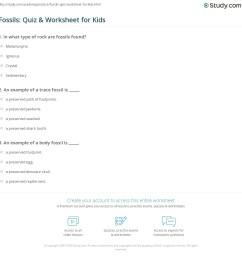 Fossils: Quiz \u0026 Worksheet for Kids   Study.com [ 1169 x 1140 Pixel ]