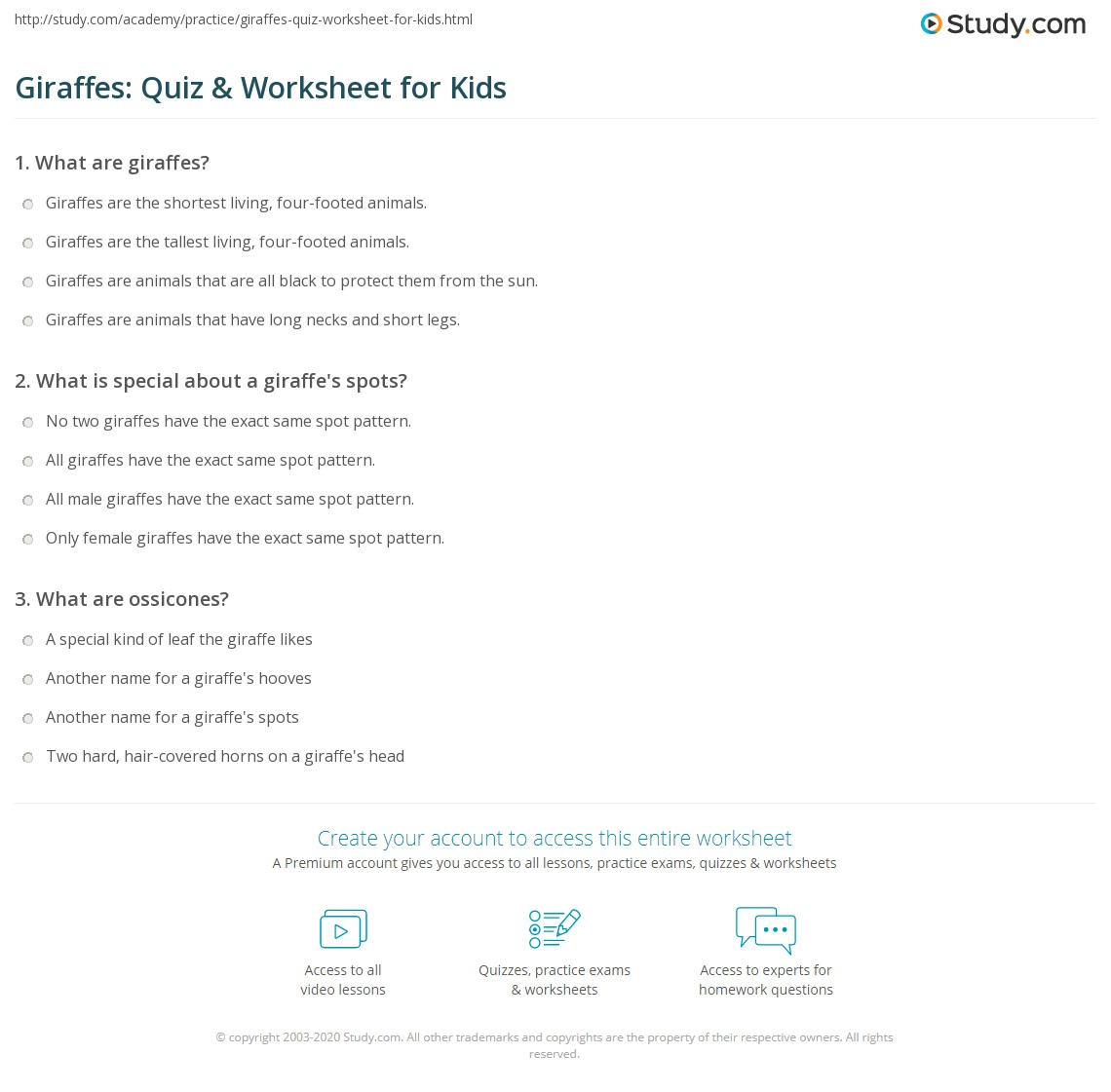 Giraffes Quiz Amp Worksheet For Kids