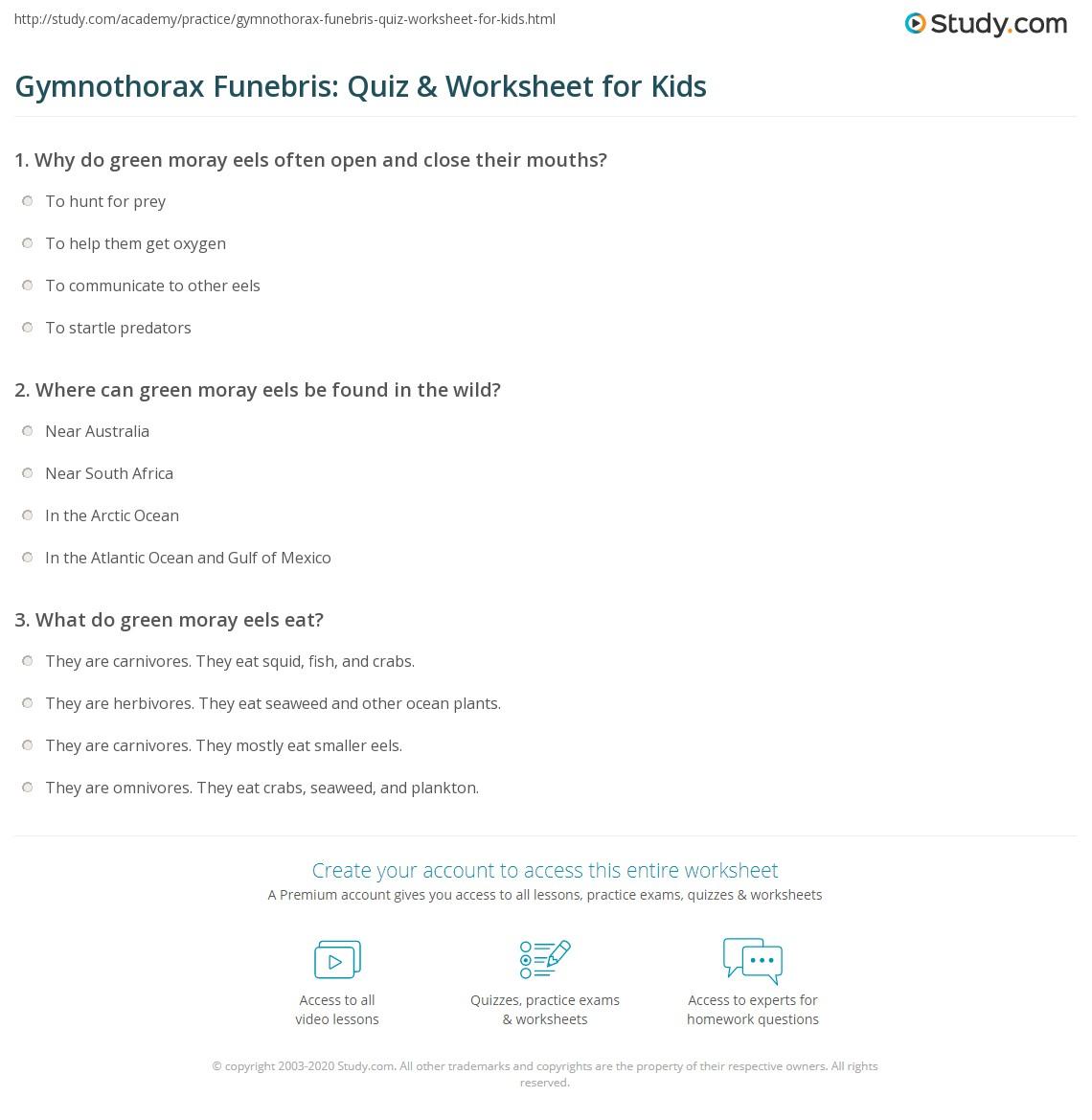 Gymnothorax Funebris Quiz Amp Worksheet For Kids