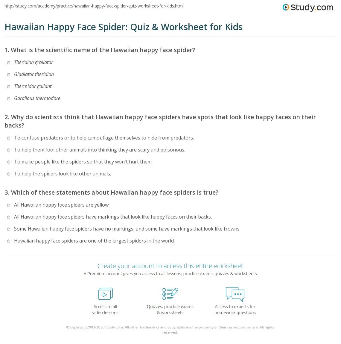 Hawaiian Happy Face Spider Quiz Amp Worksheet For Kids