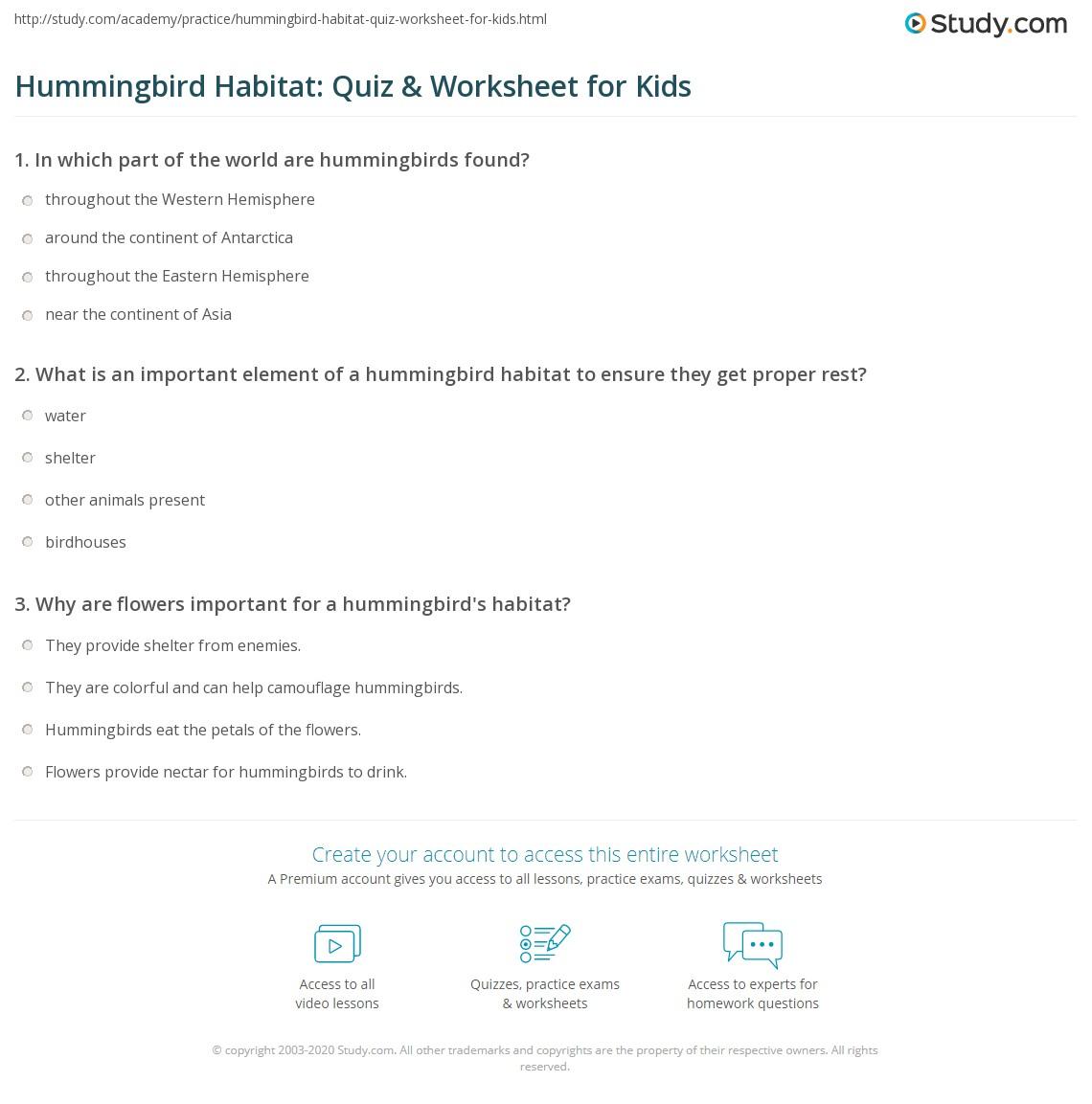 Hummingbird Habitat Quiz Amp Worksheet For Kids