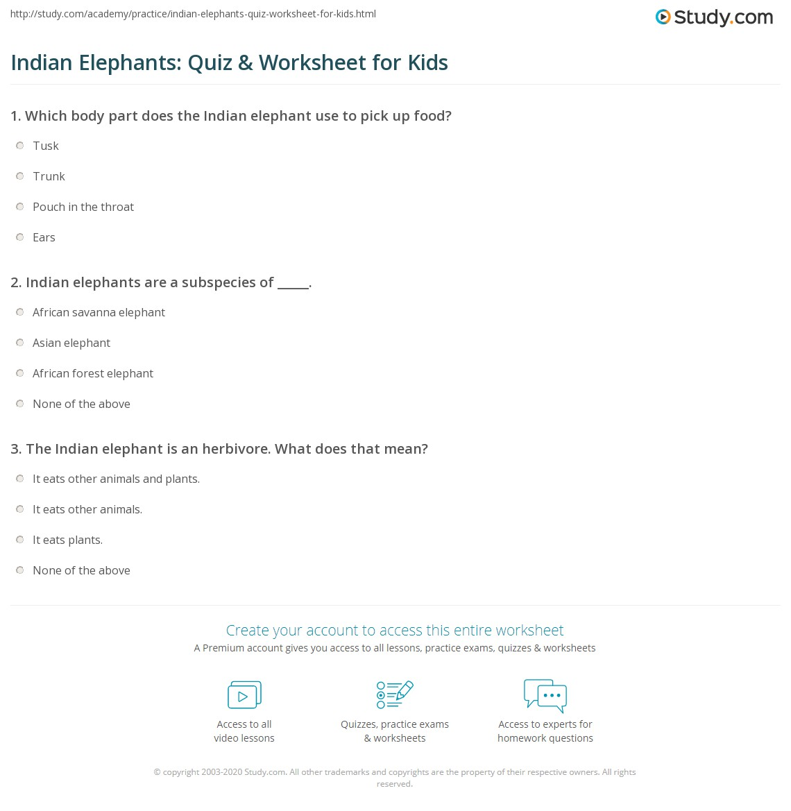 Indian Elephants Quiz Amp Worksheet For Kids