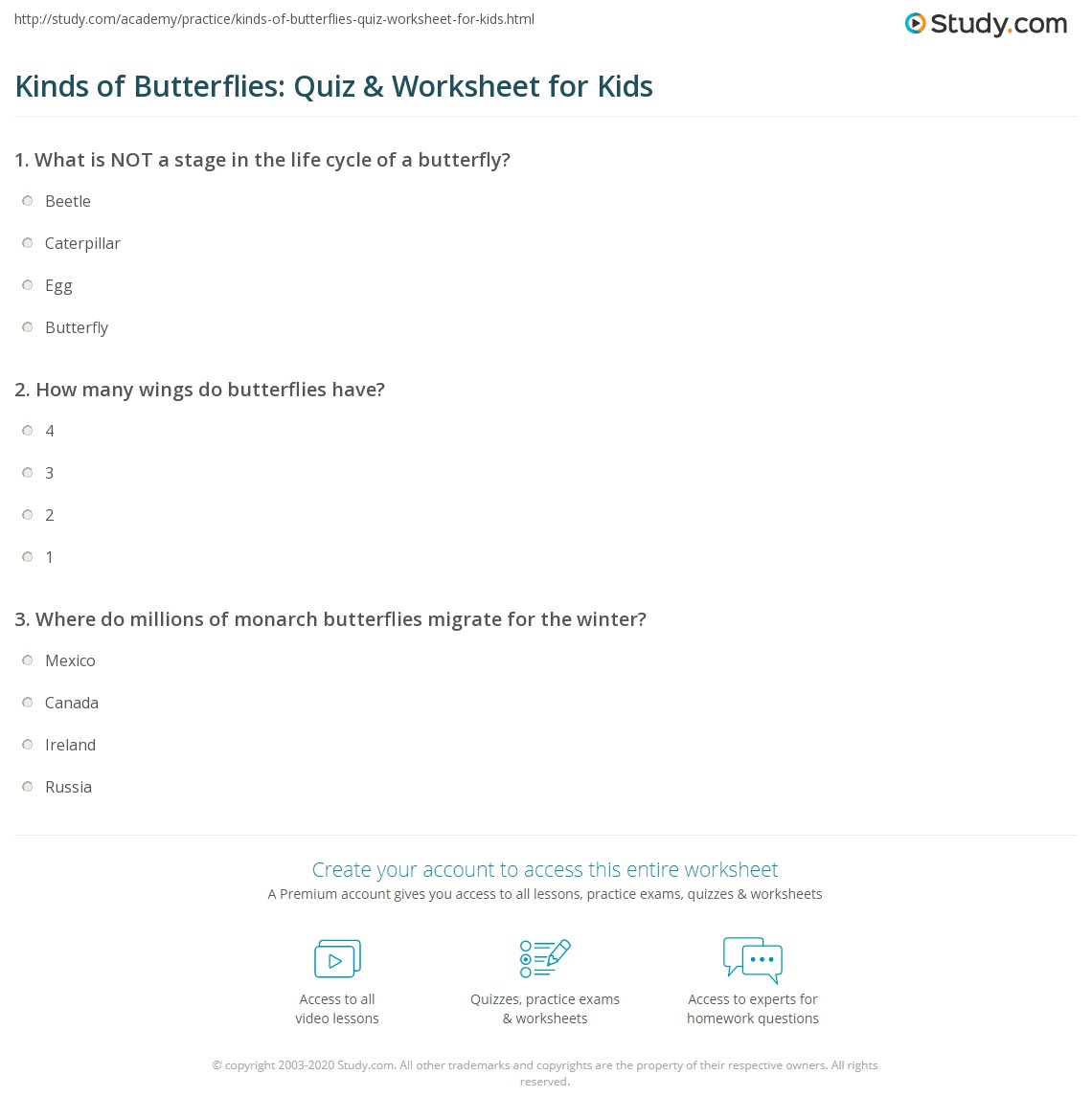 Kinds Of Butterflies Quiz Amp Worksheet For Kids