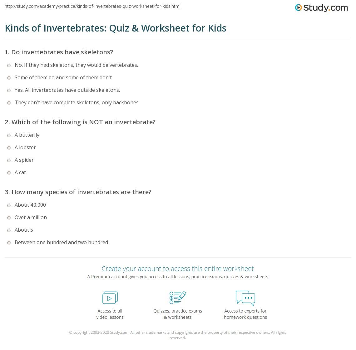 Kinds Of Invertebrates Quiz Amp Worksheet For Kids