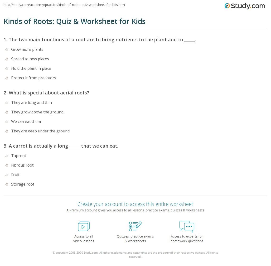 Kinds Of Roots Quiz Amp Worksheet For Kids