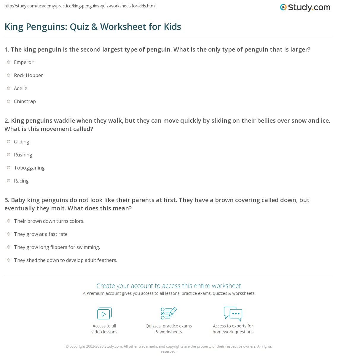 King Penguins Quiz Amp Worksheet For Kids