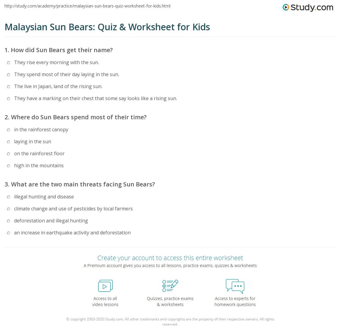 Malaysian Sun Bears Quiz Amp Worksheet For Kids