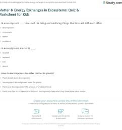 Matter \u0026 Energy Exchanges in Ecosystems: Quiz \u0026 Worksheet for Kids    Study.com [ 1160 x 1140 Pixel ]