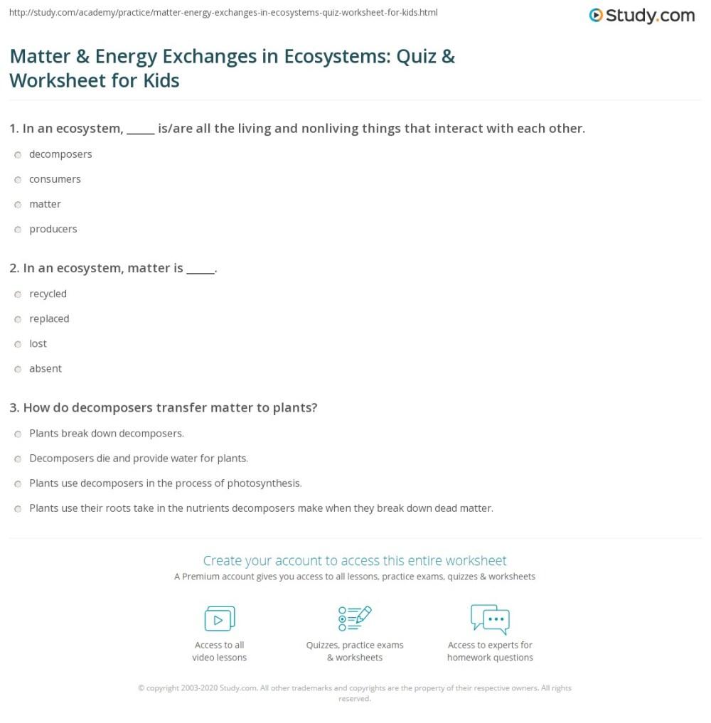 medium resolution of Matter \u0026 Energy Exchanges in Ecosystems: Quiz \u0026 Worksheet for Kids    Study.com