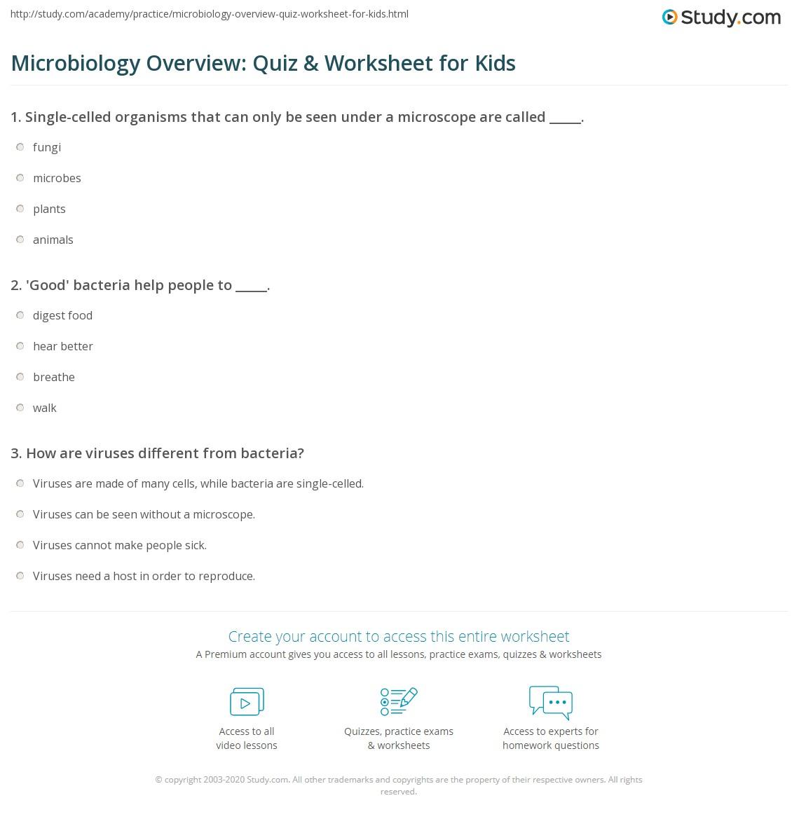 Free Microbiology Worksheet