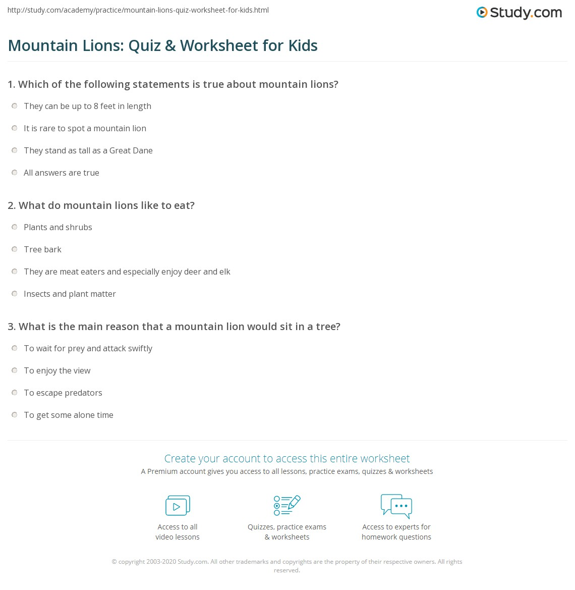 Mountain Lions Quiz Amp Worksheet For Kids