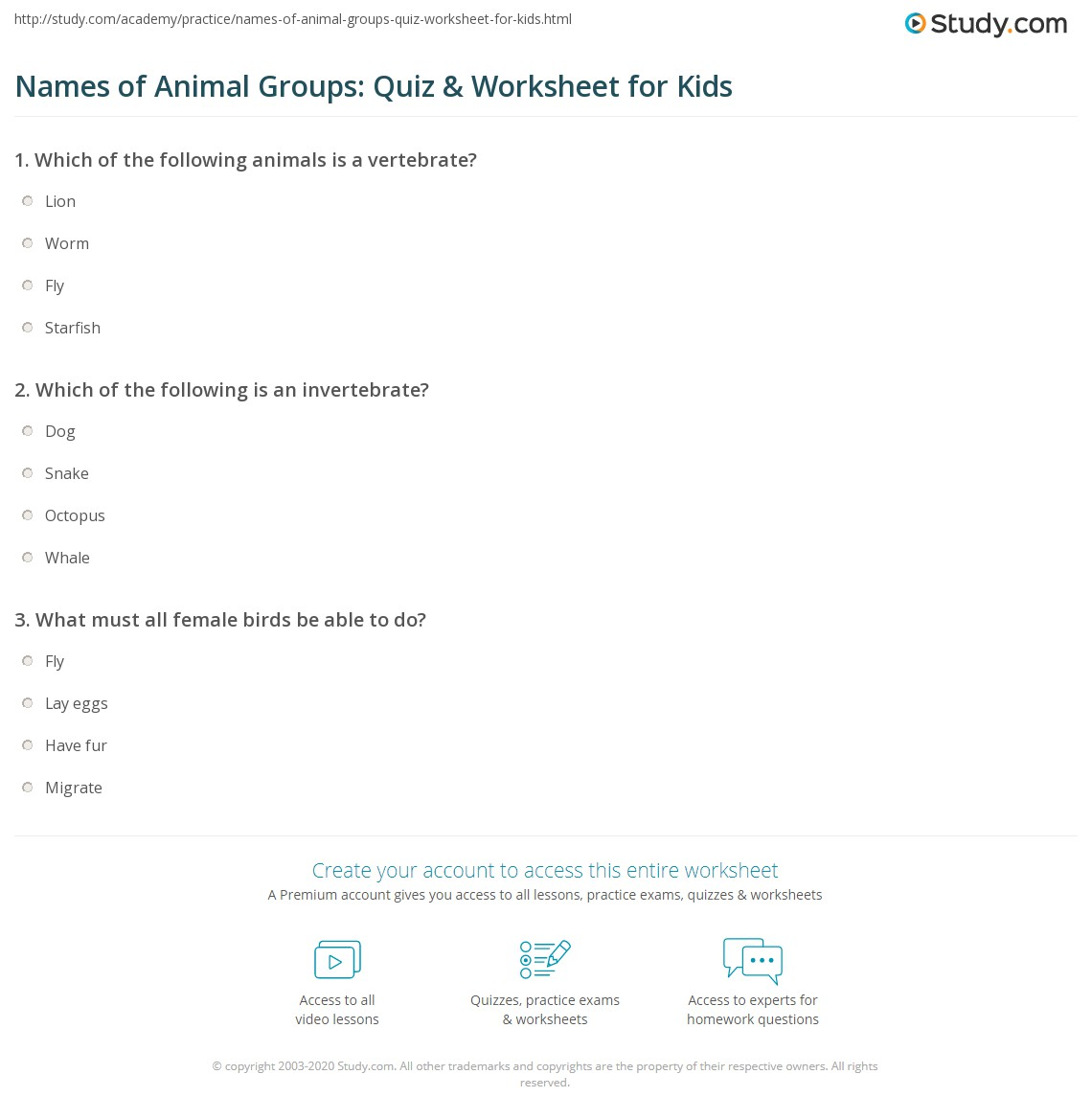 Names Of Animal Groups Quiz Amp Worksheet For Kids