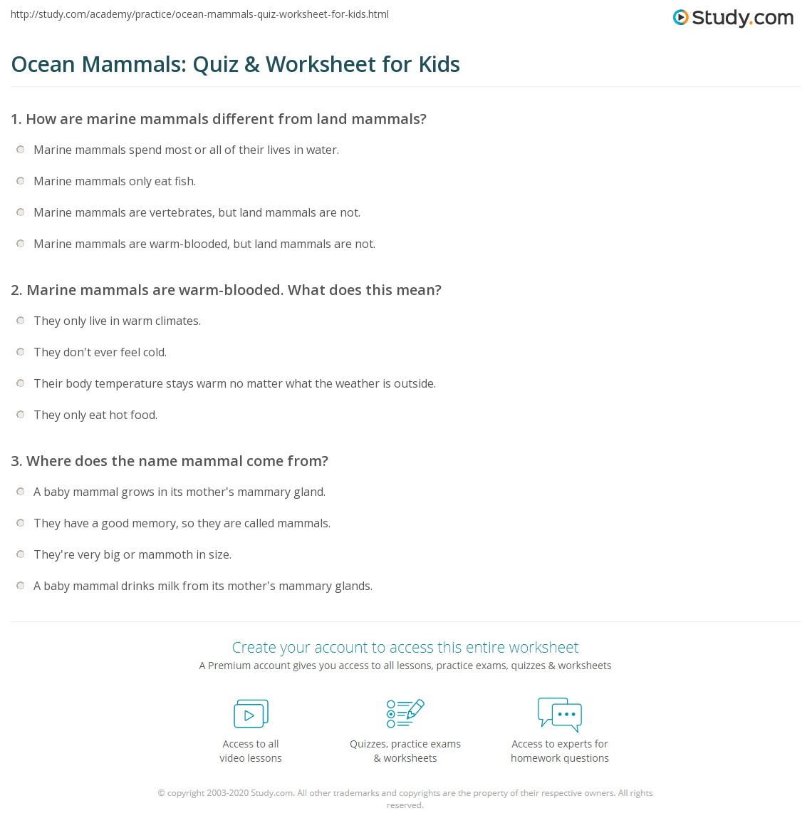 Ocean Mammals Quiz Amp Worksheet For Kids