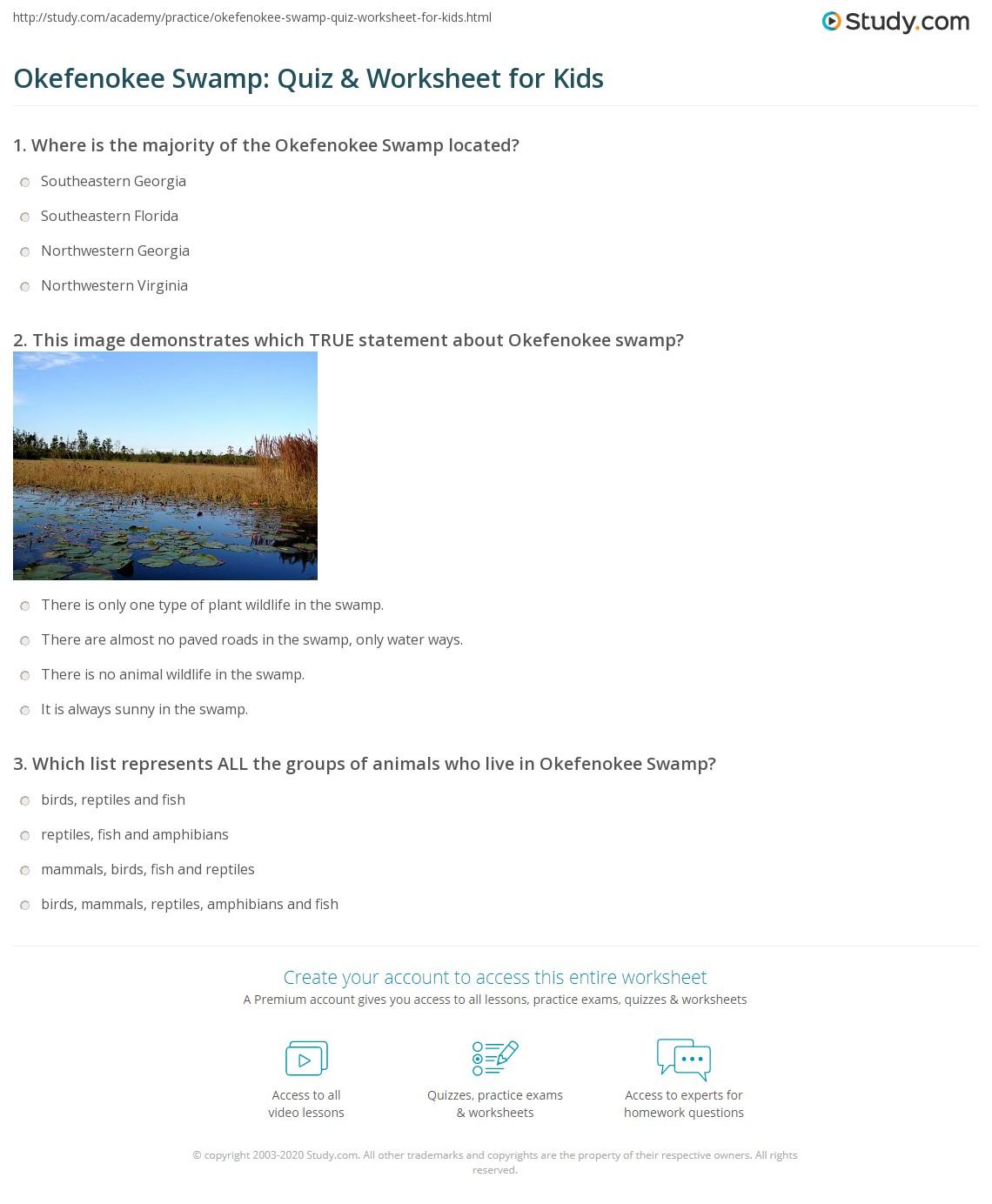 Okefenokee Swamp Quiz Amp Worksheet For Kids