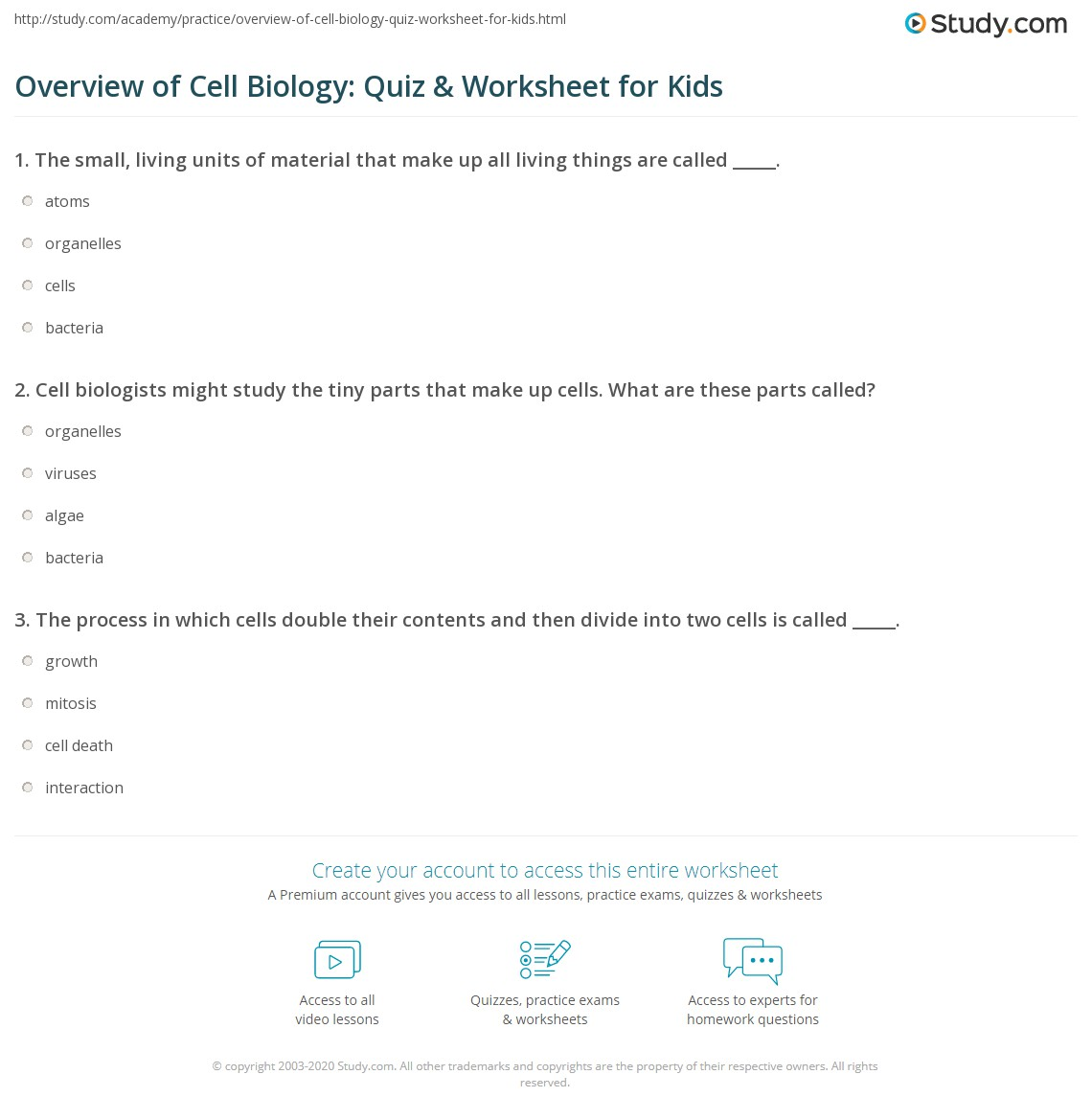 Overview Of Cell Biology Quiz Amp Worksheet For Kids