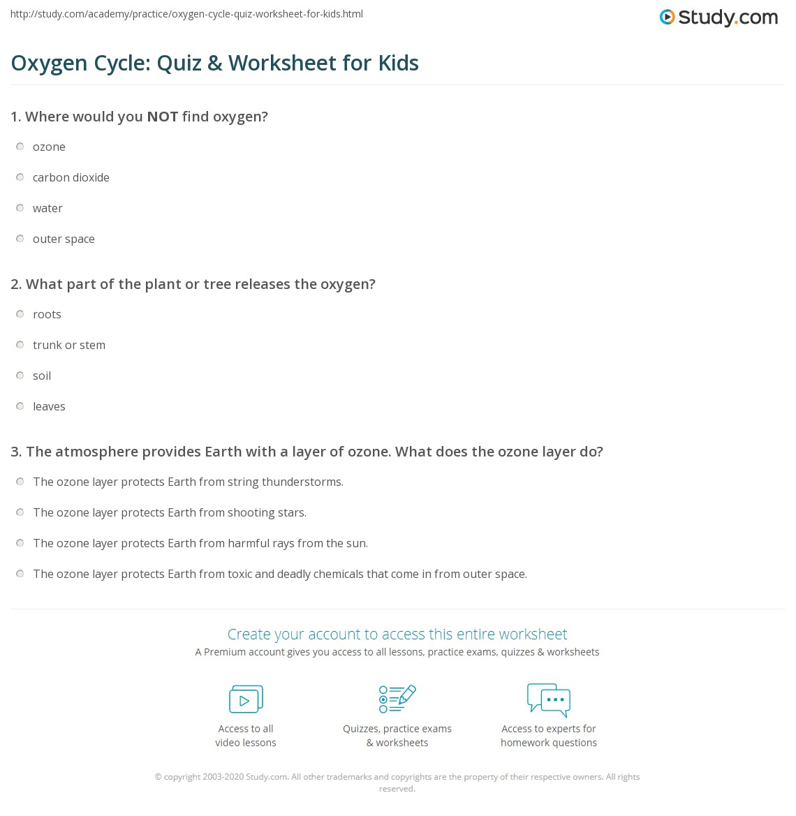 Oxygen Cycle Quiz Amp Worksheet For Kids