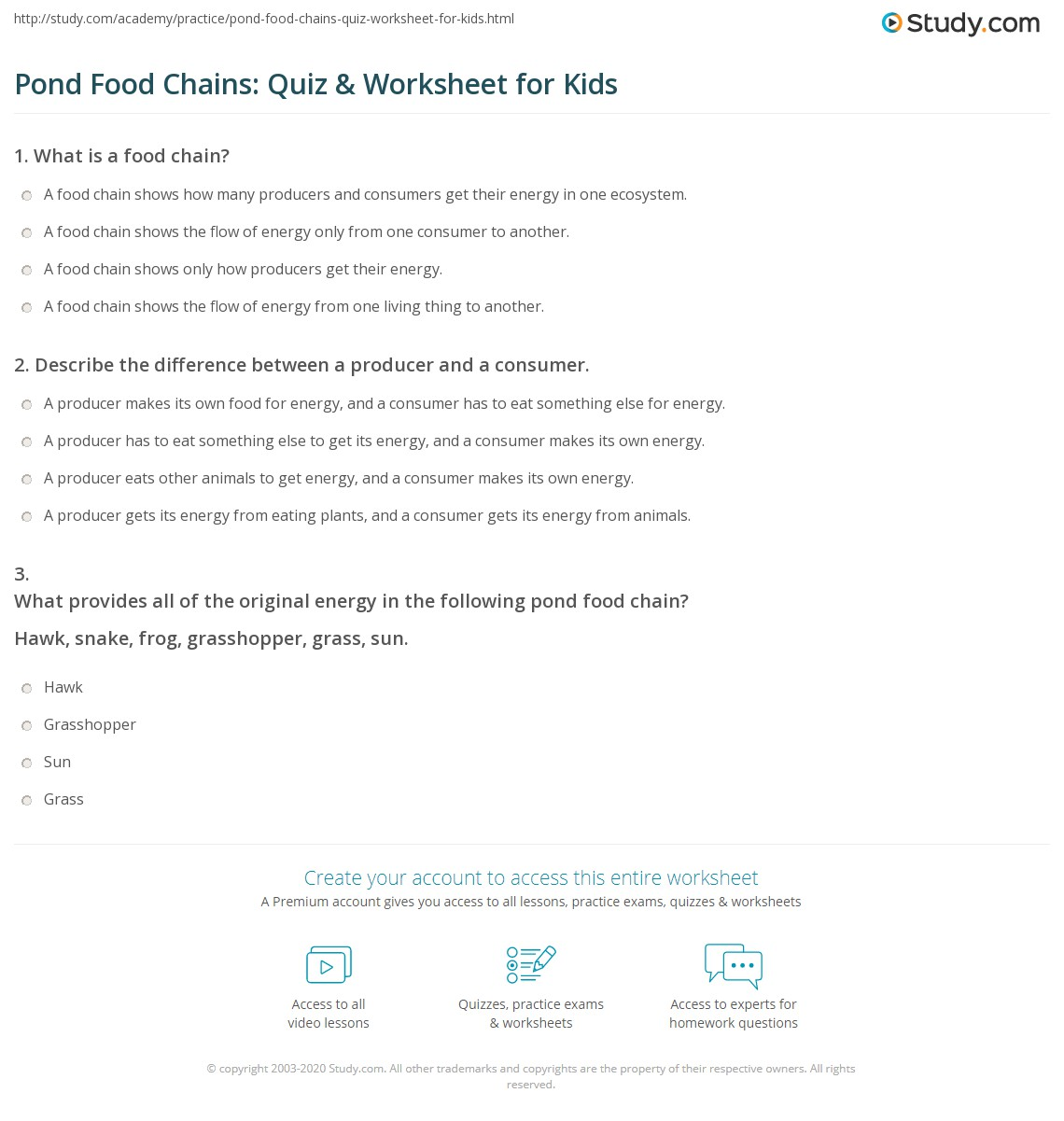 Pond Food Chains Quiz Amp Worksheet For Kids