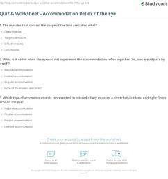 print accommodation reflex of the eye definition purpose worksheet [ 1140 x 1474 Pixel ]