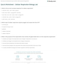 Quiz & Worksheet - Cellular Respiration Biology Lab ...