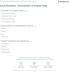 print kingdom fungi definition characteristics examples worksheet [ 1140 x 1149 Pixel ]