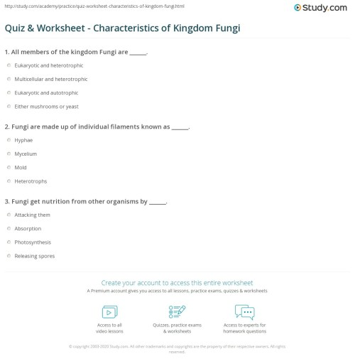 small resolution of print kingdom fungi definition characteristics examples worksheet
