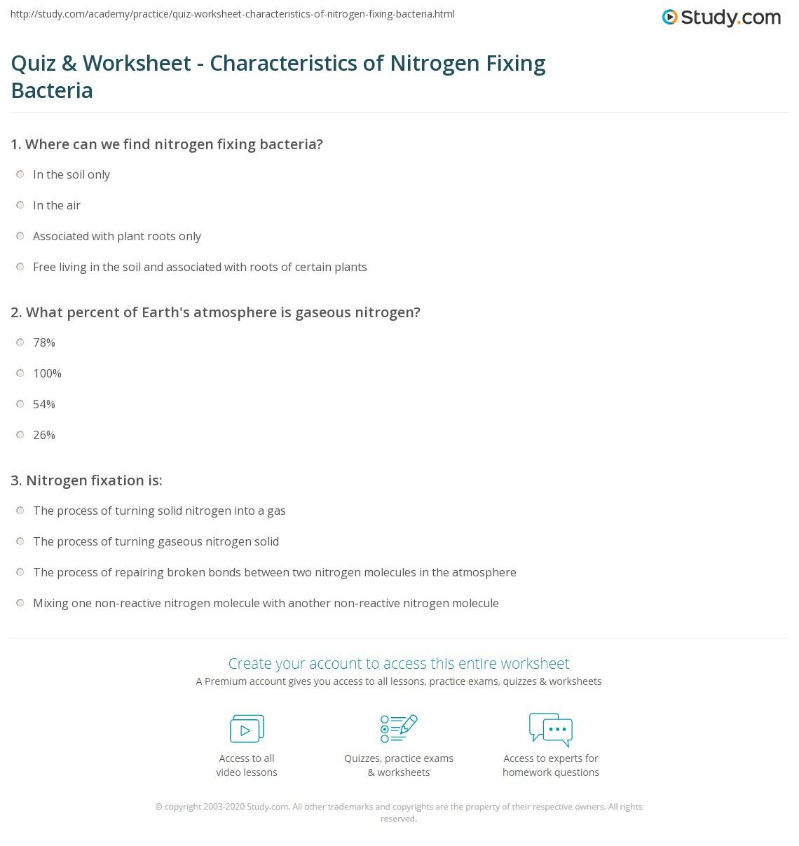 Bacteria Worksheet Notes