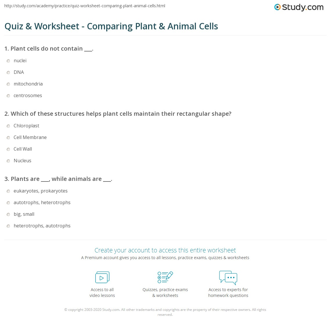 Uncategorized Plant And Animal Cells Worksheets