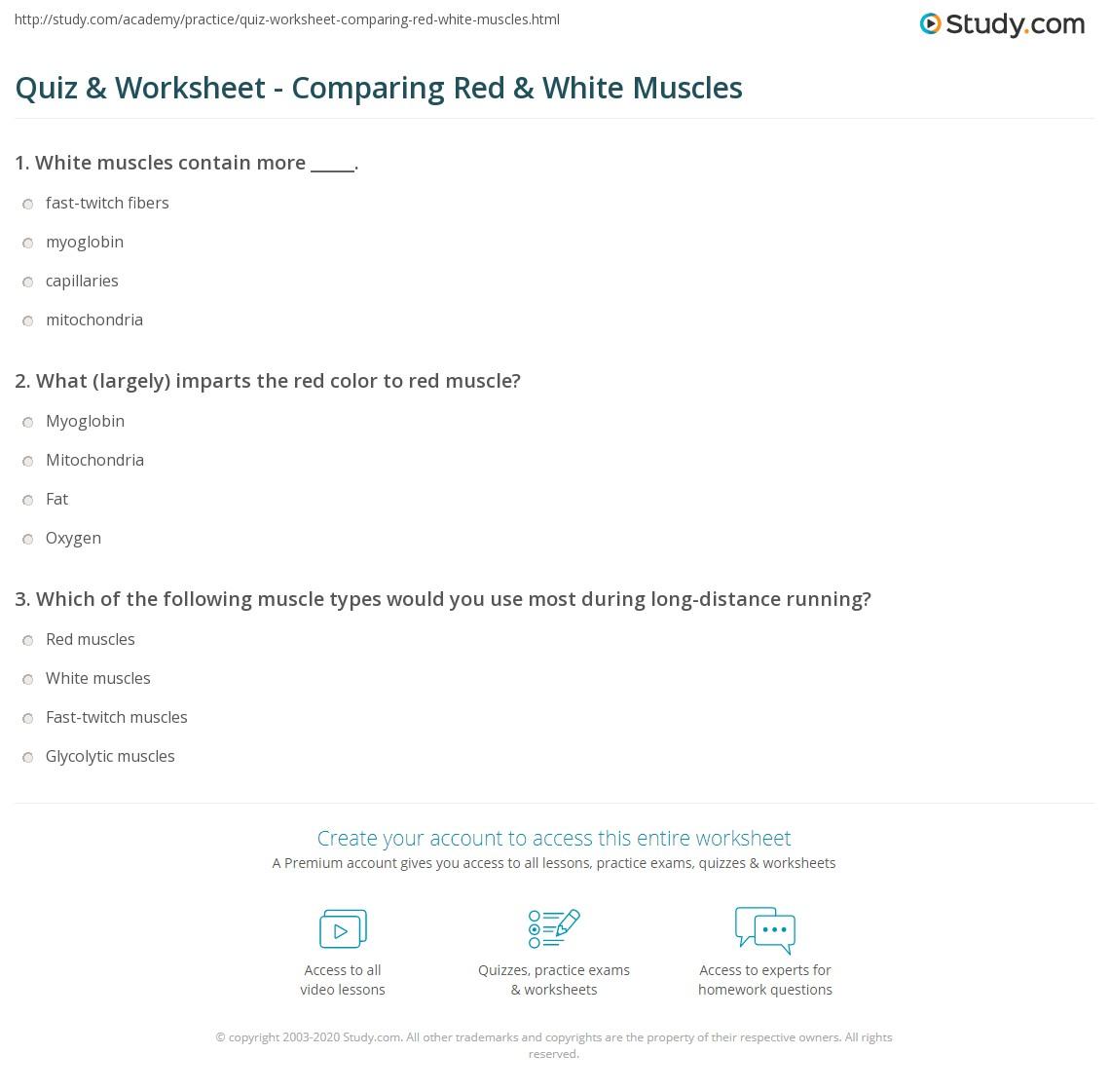 Zsksydny Coloring Pages 33 Sarcomere Coloring Worksheet