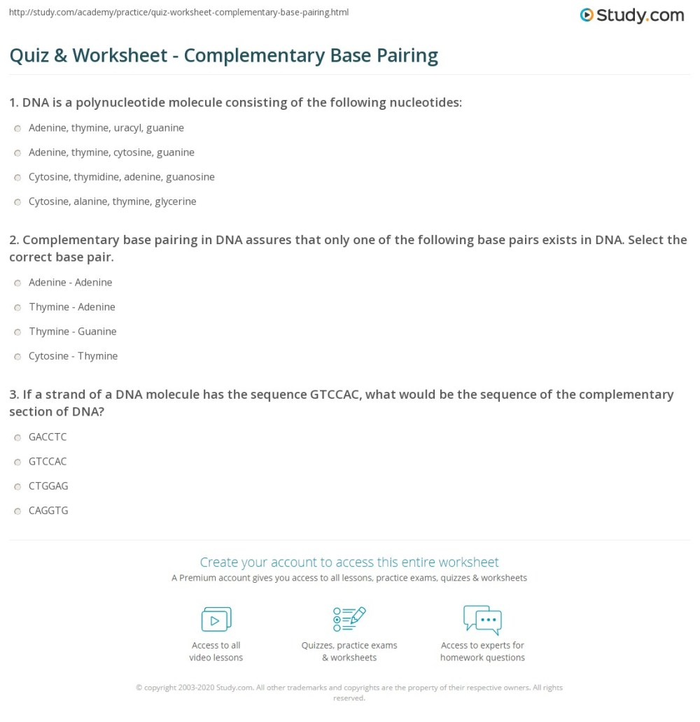 medium resolution of print complementary base pairing definition explanation worksheet